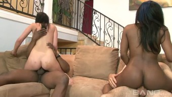 Busty ebony MILF Persia Matchless and miniscule Euro bitch like very difficult four(4) some site