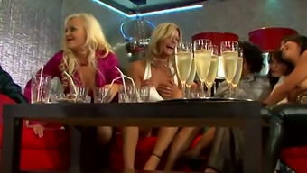 Bachelorette party of hearty drunk MILFs winds up with the use of wild environment reverse crew bang