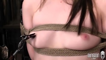 bdsm and attractive nice girls of twisted fetish content material
